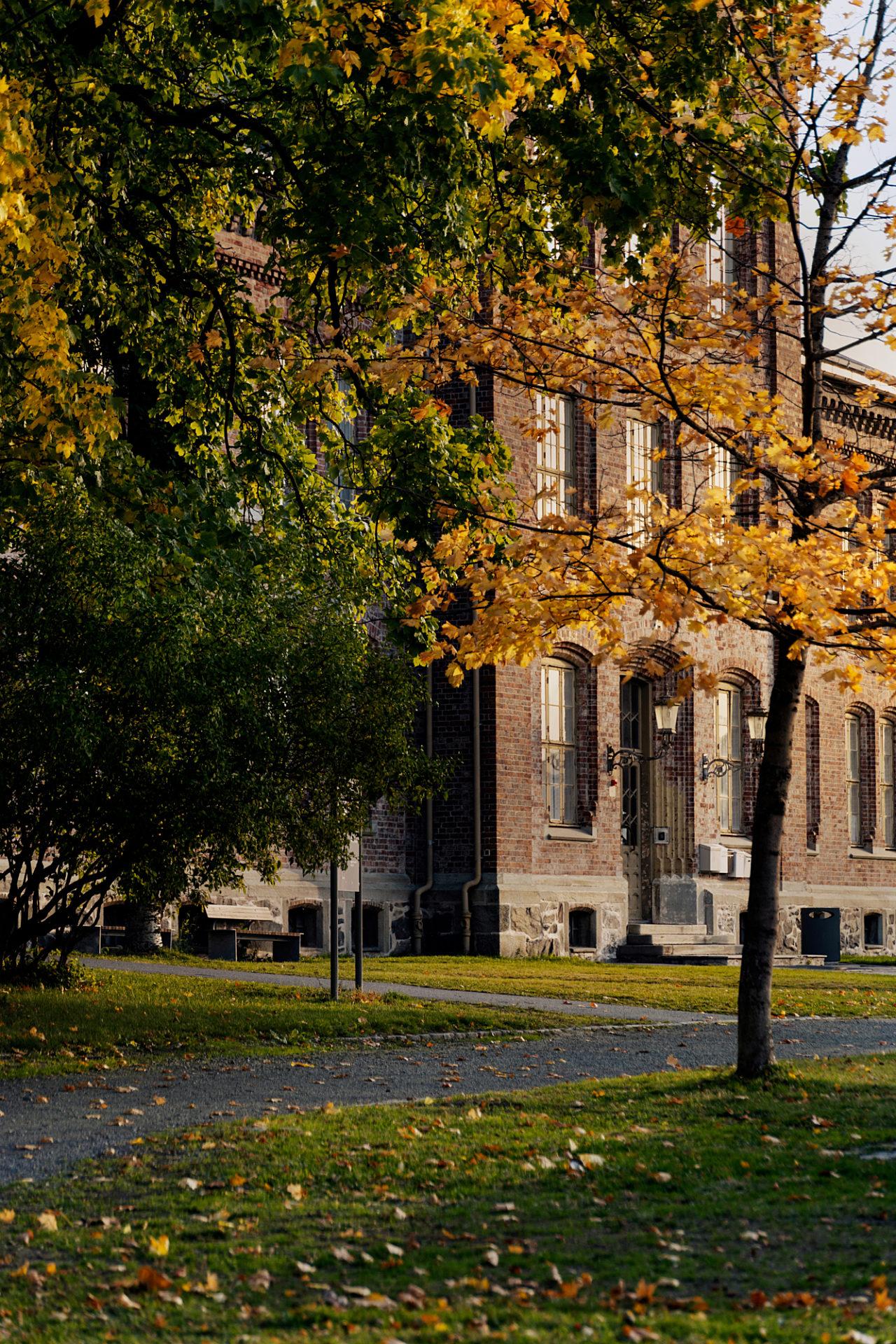Rotvoll fasade høst (1)